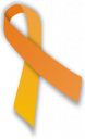 Sel Injury Awareness Ribbon
